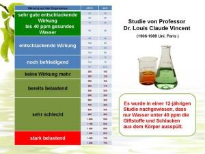 Studie-Prof-Dr-Louis-Claude-Vincent