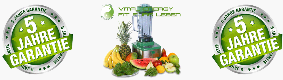 Smoothiemaker Powersmoother von Vital-energy