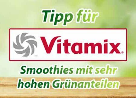 Hochleistungsmixer Vitamix