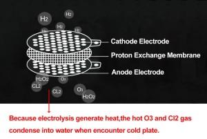 Schema-PEM-Elektrolyse-Anode-Protenen-Austausch-Membrane-Kathode
