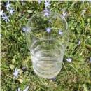 Wasserglas-Gallileo-gold